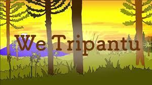 We Tripantu – Investidura